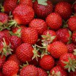 Фрийлансърът и ягодите